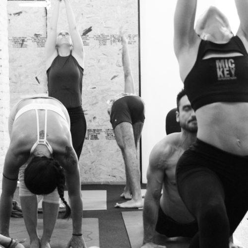 ashtanga-yoga-house-valencia-clases-mysore.JPG 2